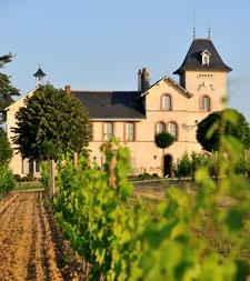 Domaine viticole bio en Anjou