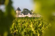 Week-end dégustation vins Anjou